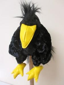 Bird 13 crow