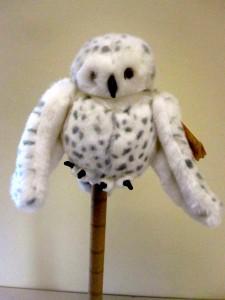 Bird 31 - Owl