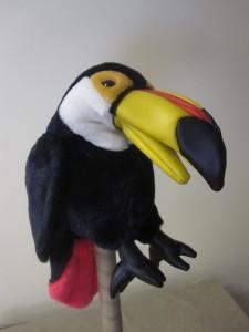 Bird 35 Toucan