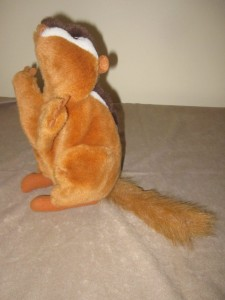 Chipmunk 1