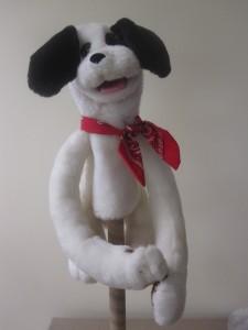 Dog 12, bandana