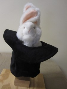 Rabbit 8 Hat